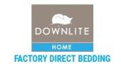 DownLite Promo Code