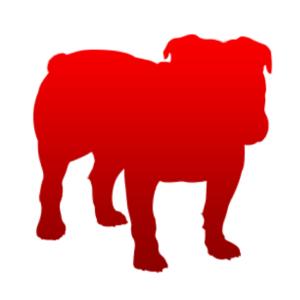 Bullguard Discount Code